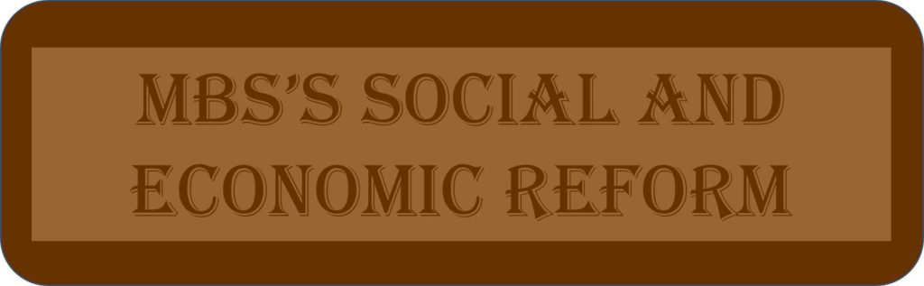 MBS's Social And Economic Reform
